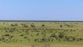 """Rural / Farming commercial property for sale at . """"Yambutta"""" Quilpie QLD 4480"""