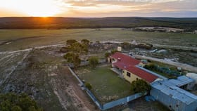 Rural / Farming commercial property for sale at 1766 Moir Road Ravensthorpe WA 6346