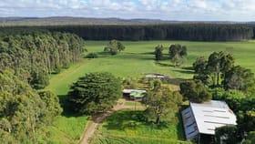 Rural / Farming commercial property for sale at 418 Roger River Road Roger River TAS 7330