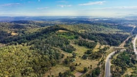 Rural / Farming commercial property for sale at 198 Camp Road Greta NSW 2334