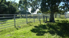 Rural / Farming commercial property for sale at 12/35 Naughtons Gap Road Casino NSW 2470