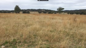 Rural / Farming commercial property for sale at 2803 Bingara Road Inverell NSW 2360