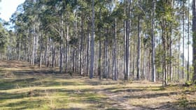 Rural / Farming commercial property for sale at 408 (a) Farm Road Bonalbo NSW 2469