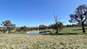 Rural / Farming commercial property for sale at Lot 121, 1488 Mutton Falls Rd O'connell NSW 2795