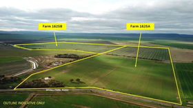 Rural / Farming commercial property for sale at FARM 1625B MYALL PARK ROAD Yenda NSW 2681