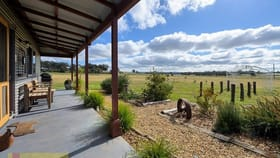 Rural / Farming commercial property for sale at 88 Bergalin  Road Gulgong NSW 2852