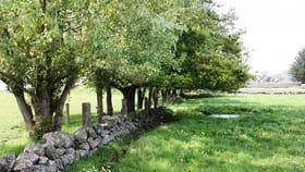 Rural / Farming commercial property for sale at 170 Allans Road Framlingham VIC 3265