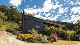 Rural / Farming commercial property for sale at 497 Glen Road Craven NSW 2422