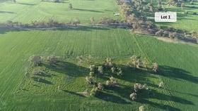 Rural / Farming commercial property for sale at 308 Barmah-Shepparton Road Barmah VIC 3639
