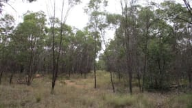 Rural / Farming commercial property for sale at Lot 44 Golden Glow Road Tara QLD 4421