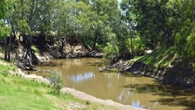 Rural / Farming commercial property for sale at 10000-10067 The Escort Way 'Wilgas' Forbes NSW 2871