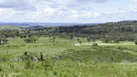 Rural / Farming commercial property for sale at 660 Kerrs Creek Road Kerrs Creek NSW 2800