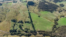 Rural / Farming commercial property for sale at 506 Jerrong Road Taralga NSW 2580