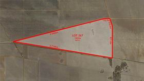 Rural / Farming commercial property for sale at PENNA ROAD South Hummocks SA 5550