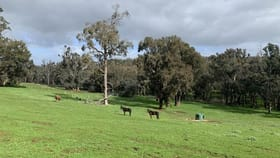 Rural / Farming commercial property for sale at 527 Greenbushes-Boyup Brook Road Greenbushes WA 6254