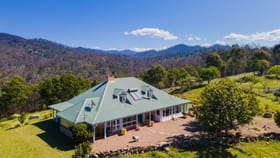 Rural / Farming commercial property for sale at 271 County Boundary Road Cobargo NSW 2550