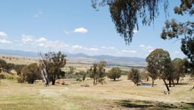 Rural / Farming commercial property for sale at Lot 6 Drakes Hill Road Mansfield VIC 3722