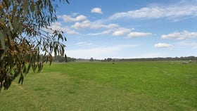 Rural / Farming commercial property for sale at 204 Swanpool Road Swanpool VIC 3673