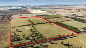 Rural / Farming commercial property for sale at 860 Goornong-Mayreef Road Avonmore VIC 3559
