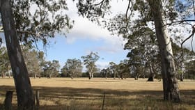 Rural / Farming commercial property for sale at Lot 31 Chapples Road, Wild Dog Valley Naracoorte SA 5271