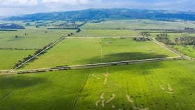 Rural / Farming commercial property for sale at 225 Lynche Road Bass VIC 3991