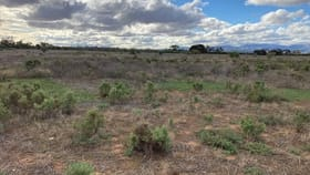 Rural / Farming commercial property for sale at Section 332 Reservoir Road Port Germein SA 5495