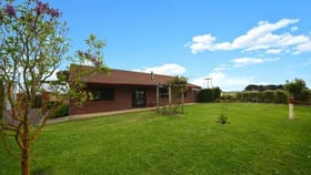 Rural / Farming commercial property for sale at 39 Murphys Road Portland VIC 3305
