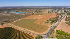 Rural / Farming commercial property for sale at 25/ Whiting Street Merbein VIC 3505