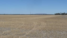 Rural / Farming commercial property sold at # Quantong Cemetery Road Horsham VIC 3400
