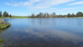 Rural / Farming commercial property for sale at 164 Worsley Back Road Allanson WA 6225