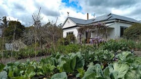 Rural / Farming commercial property for sale at 2946 Golconda Road Blumont TAS 7260