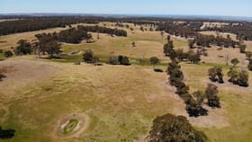 Rural / Farming commercial property for sale at 395 Waddells Road Nicholson VIC 3882