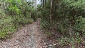 Rural / Farming commercial property for sale at 691A Brown Mountain Road Underwood TAS 7268