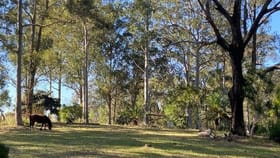Rural / Farming commercial property for sale at 133 Armidale Road Yarravel NSW 2440