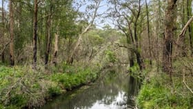 Rural / Farming commercial property sold at 4161 Kings Highway, Monga Braidwood NSW 2622
