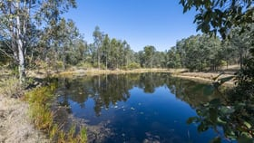 Rural / Farming commercial property for sale at 300 Doboy Road Buccarumbi NSW 2460
