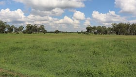 Rural / Farming commercial property for sale at 119 Dunnetts Road Bracewell QLD 4695