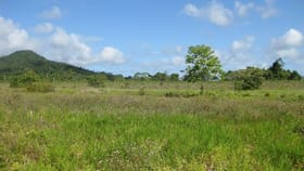 Rural / Farming commercial property for sale at East Feluga QLD 4854