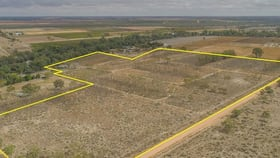 Rural / Farming commercial property for sale at 252D Darling View Road Wentworth NSW 2648