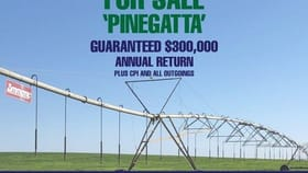 """Rural / Farming commercial property for sale at """"Pinegatta"""" Avalon Rd Deniliquin NSW 2710"""