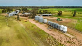Rural / Farming commercial property for sale at 'Quandong' 696 Ardlethan Road Coolamon NSW 2701