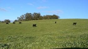 Rural / Farming commercial property for sale at Lot 903 Kirkpatrick Road Upper Capel WA 6239