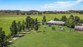 Rural / Farming commercial property for sale at 1150 Wollar Road Mudgee NSW 2850