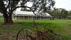 Rural / Farming commercial property for sale at 466 Cobb Highway Moama NSW 2731