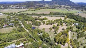 Rural / Farming commercial property for sale at 45-79 Finley Road Eumundi QLD 4562