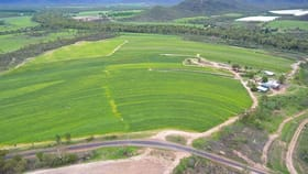 Rural / Farming commercial property for sale at Dimbulah QLD 4872