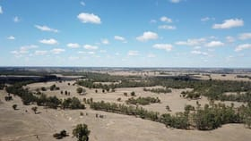 Rural / Farming commercial property for sale at . Corner Beemelon & Rangemore Roads Wakool NSW 2710