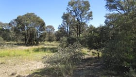 Rural / Farming commercial property sold at LOT 60 STAINES ROAD Tara QLD 4421