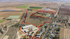 Rural / Farming commercial property for sale at 1-4 Factory Lane Pyramid Hill VIC 3575