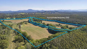 Rural / Farming commercial property for sale at 555 Hydes Creek Road Bellingen NSW 2454